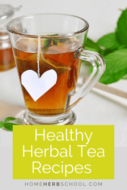 These 5 healthy herbal tea recipes both improve and maintain your health and wellbeing. These great tasting beneficial ingredients are the foundation of herbalism. They include lemon balm, chamomile, green tea, passion flower, dandelion, chicory, nettles, ginger, peppermint and more. #HerbalismCourses #HerbalMedicineCourses