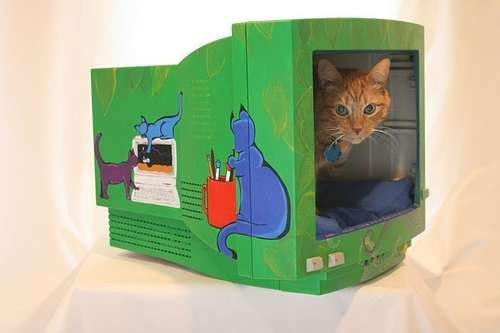 Interior Of Any Apartment Can Be Converted To Cat House Ideas