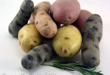 Potato2