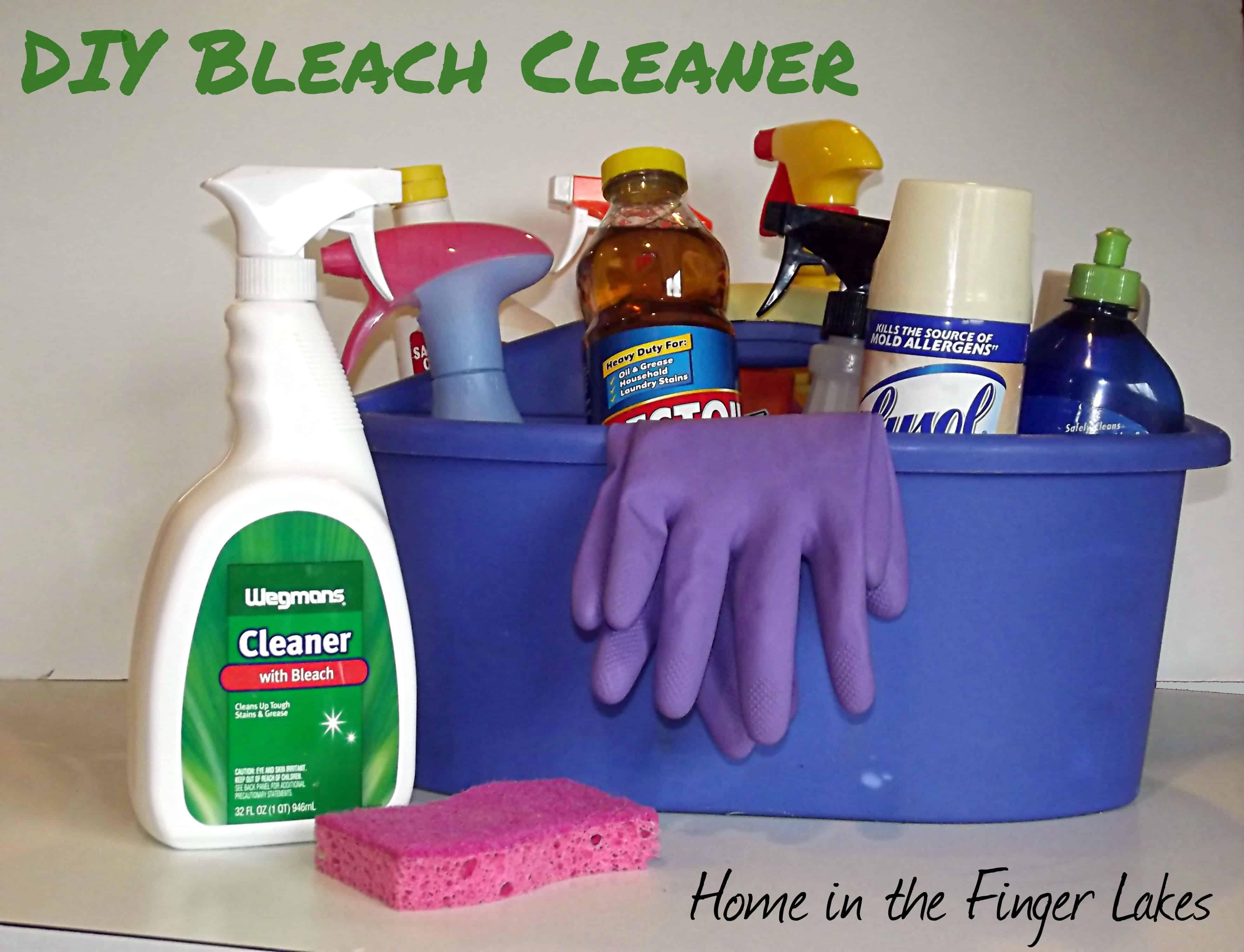 DIY Bleach Cleaner - Home in FLX