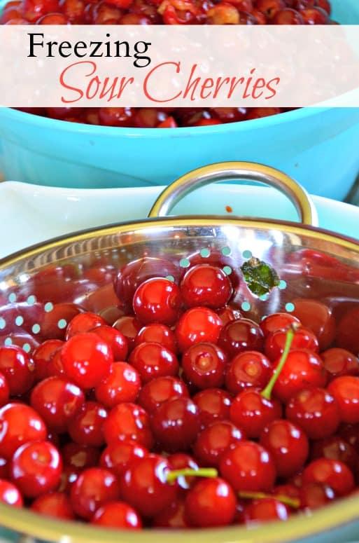 Freezing Sour Cherries