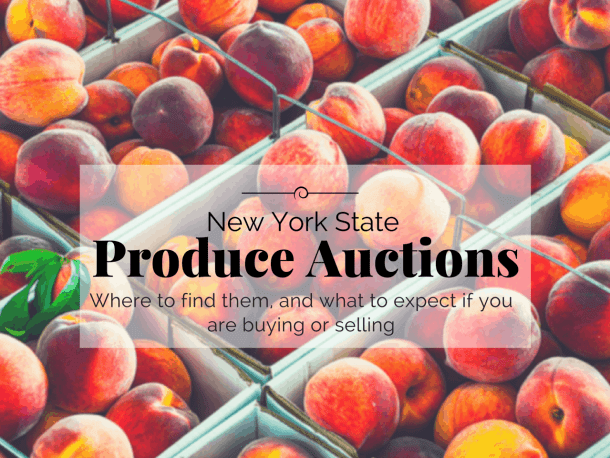 New York State Produce Auctions, where to find them and what to expect if you are buying or selling