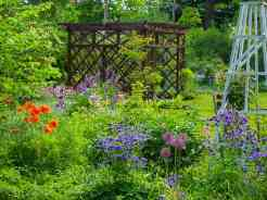 Vintage Garden Newark Garden