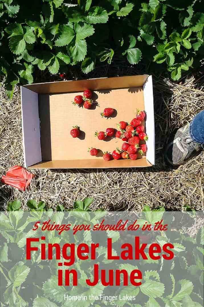 Don't let spring slips by without enjoying these fun springtime activities in the Finger Lakes.