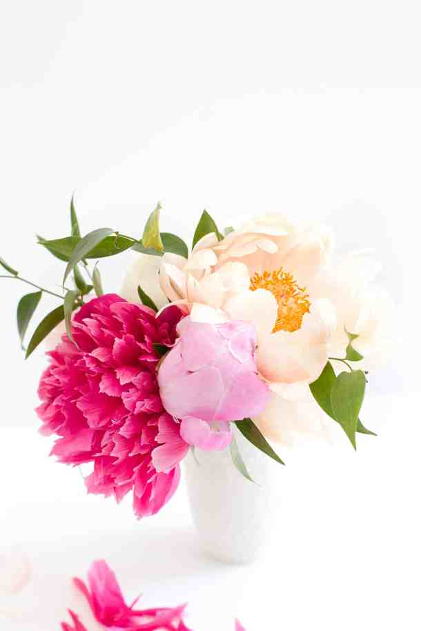 Bouquet of various varieties of peonies held in a small white vase on a white background.
