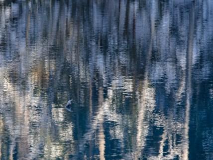 Reflections at Kiikunlähde 1