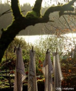 autumn lakeview