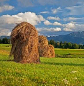 Østeuropa, Polen, Tatra, bjerge, natur, rejse