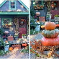 A Fall Harvest Around the Potting Shed