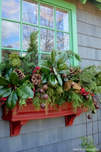 Potting Shed: Sprucing Up the Window Boxes for Christmas ...