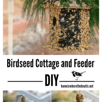 Winter Fun DIY: Create a Birdseed Cottage Feeder