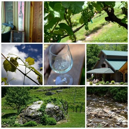 Grandfather Vineyard & Winery-001