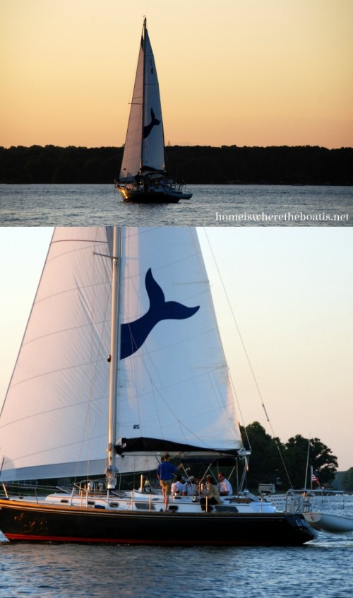 Sailboat Lake Norman