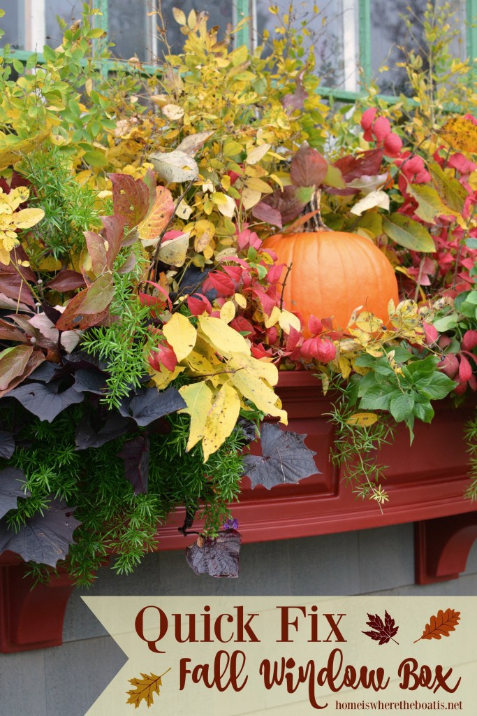 Quick Fix Fall Window Box