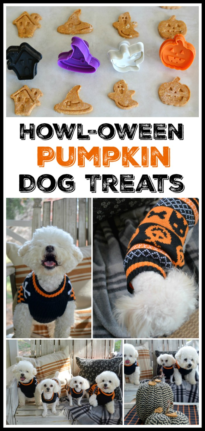 Howl-oween Pumpkin Dog Treats