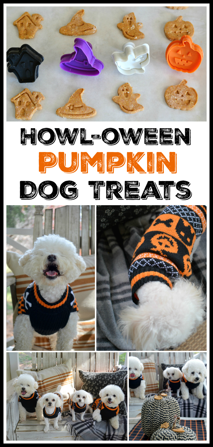 Treat your pups to Howl-oween Pumpkin Dog Treats! Made with pumpkin, applesauce, whole wheat flour and oats!
