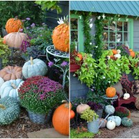 Potting Shed: Fall Window Boxes and Pumpkins
