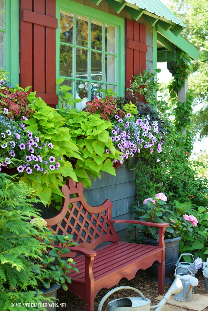 Window boxes with spring flowers and bench by Potting Shed | ©homeiswheretheboatis.net #garden #flowers #shed #windowbox
