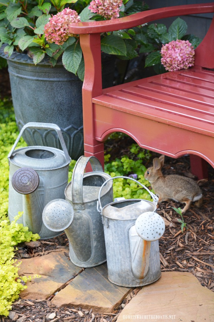 Bunny under bench | ©homeiswheretheboatis.net #flowers #garden