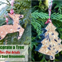 DIY Suet Ornaments for Your Feathered Friends