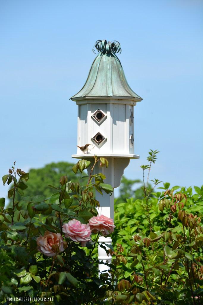 Birdhouse | ©homeiswheretheboatis.net #garden #flowers #birdhouse