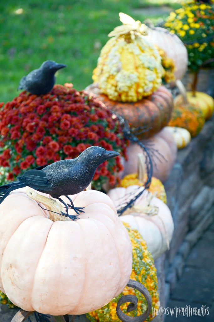 Pumpkins and Mums with Crows on stone wall | ©homeiswheretheboatis.net #halloween #tablescapes #garden
