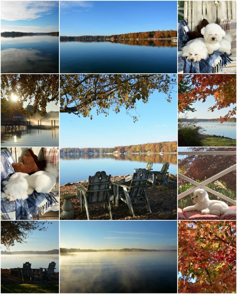 Weekend Waterview November Lake Norman | ©homeiswheretheboatis.net #fall #autumn #lake #dogs