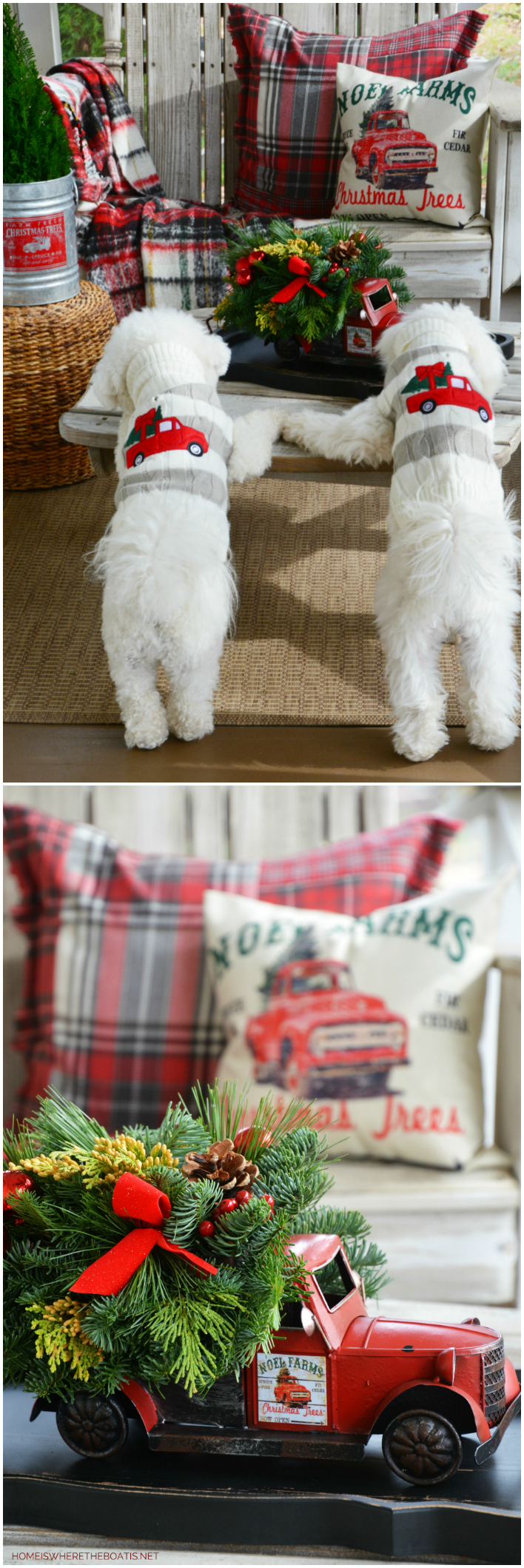 Christmas on the Porch truck centerpiece and dogs with Christmas tree in a truck sweaters | ©homeiswheretheboatis.net #christmas #truck #porch #dogs
