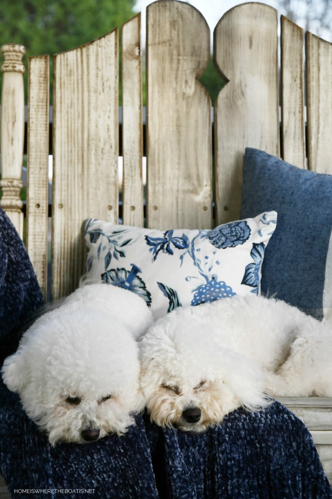 Lola and Sophie napping on the porch and January Blues | ©homeiswheretheboatis.net