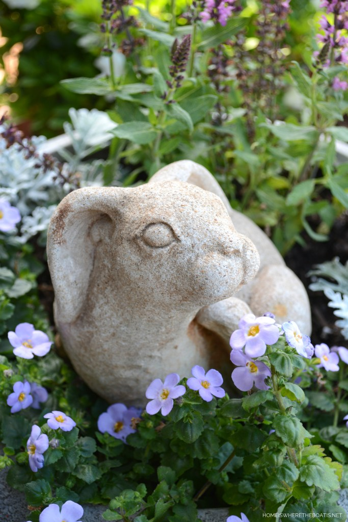 Bunny in planter | ©homeiswheretheboatis.net #flowers #garden #shed #pottingshed