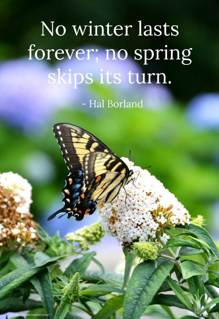 """No winter lasts forever; no spring skips its turn."" - Hal Borland 