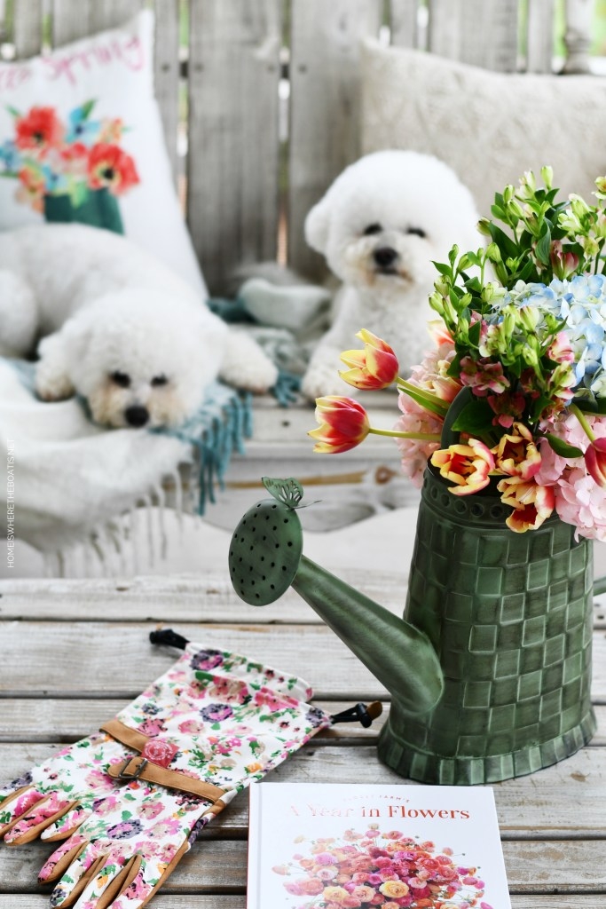Lola and Sophie on porch | ©homeiswheretheboatis.net #dogs #bichonfrise