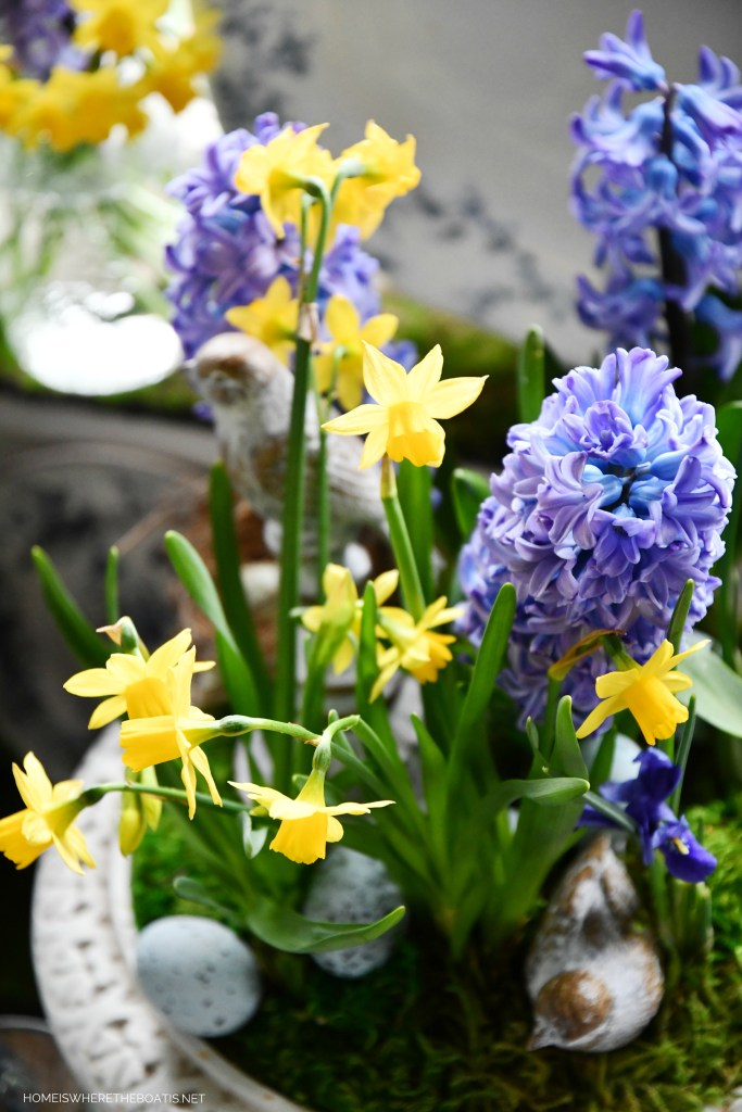 DIY garden urn with spring hyacinths, daffodils, moss, birds, eggs | ©homeiswheretheboatis.net #spring #flowers