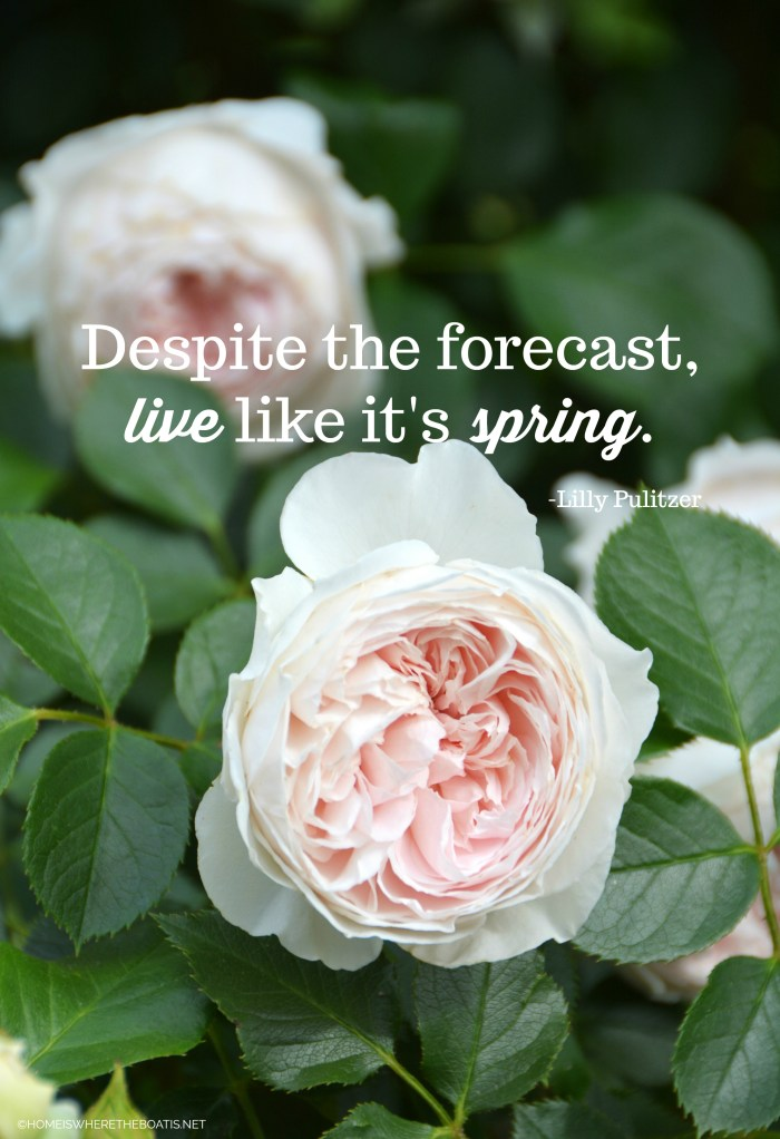 """Despite the forecast, live like it's spring."" -Lilly Pulitzer"