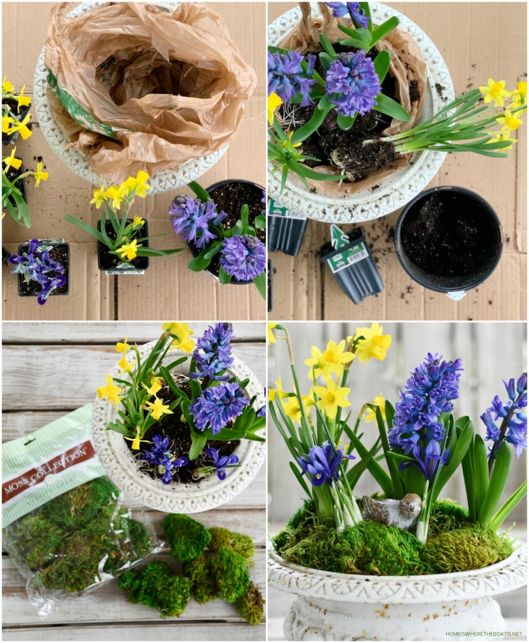 DIY garden urn with spring bulbs | ©homeiswheretheboatis.net #spring #flowers
