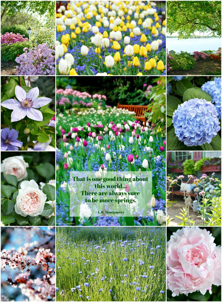 Spring inspiration quotes | ©homeiswheretheboatis.net #spring #garden #flowers