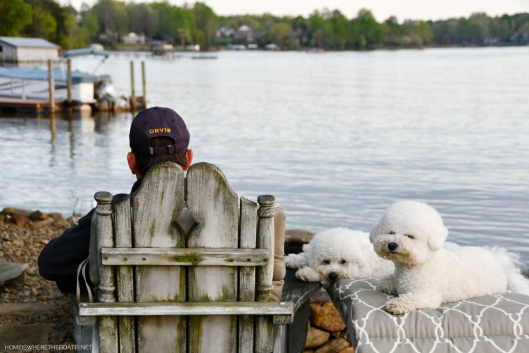 Weekend Waterview Guest Bloggers Lola and Sophie | ©homeiswheretheboatis.net #dogs #bichonfrise #lake