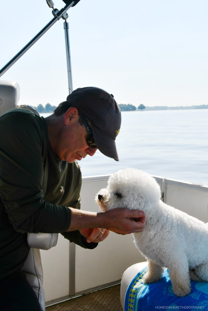 Boating with dogs | ©homeiswheretheboatis.net #lake #pontoon #bichonfrise