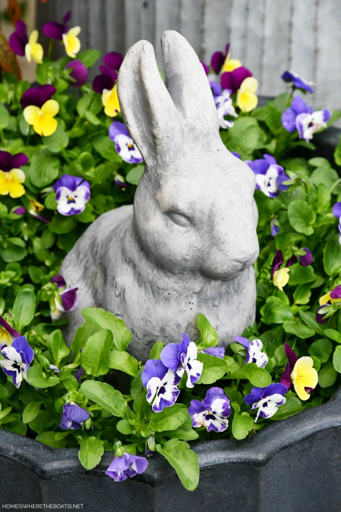 Bunny in planter with violas | ©homeiswheretheboatis.net #spring #garden #flowers