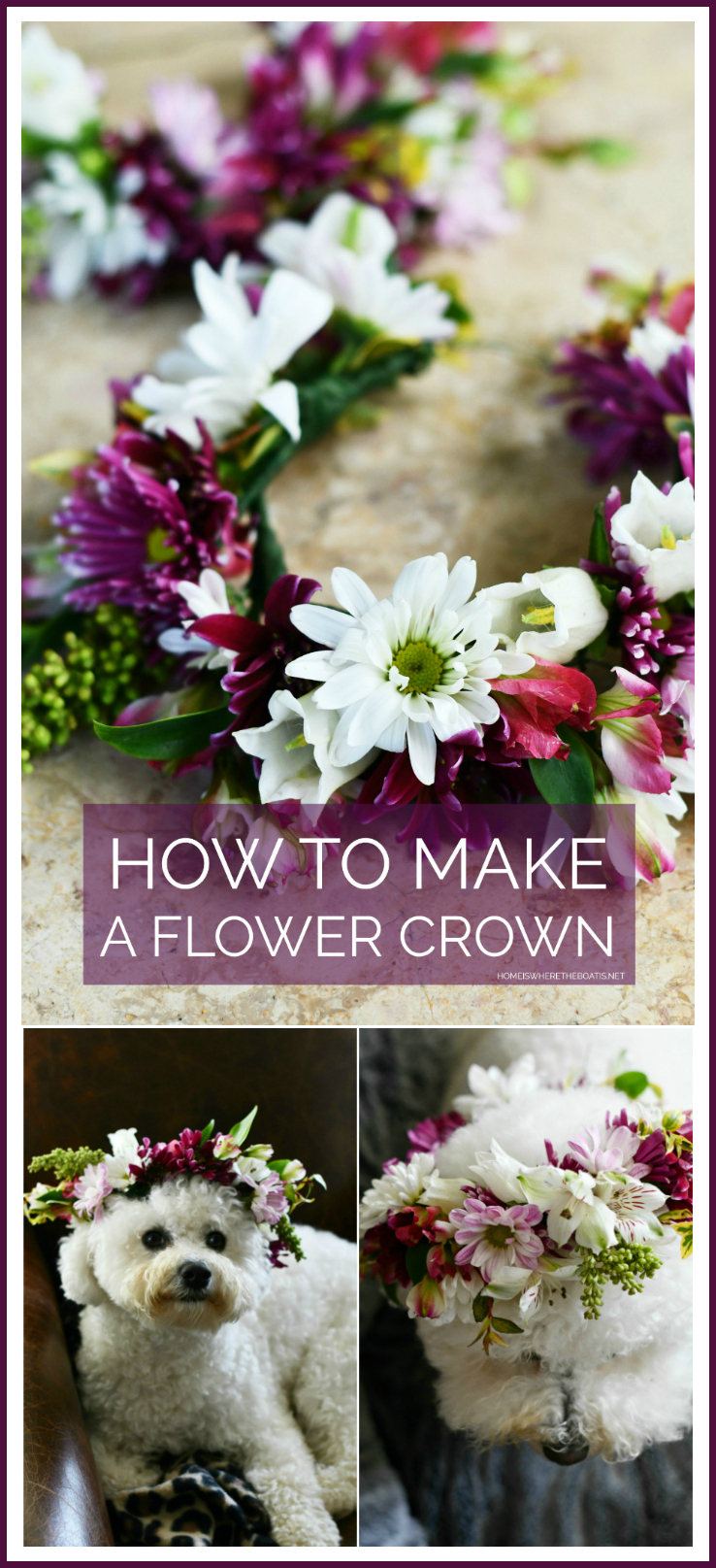 Create a flower crown for you or your pup to celebrate birthdays, weddings or for any special occasion. You'll find helpful tips and techniques, along with floral longevity tips.