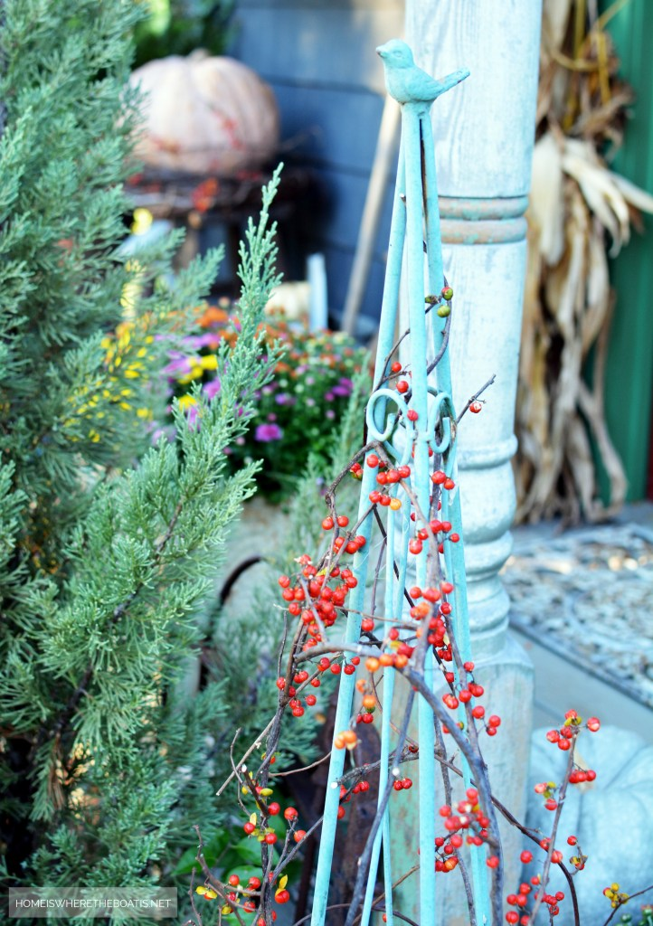 Trellis with bird and bittersweet vine for fall Potting Shed | ©homeiswheretheboatis.net #fall #shed #mums