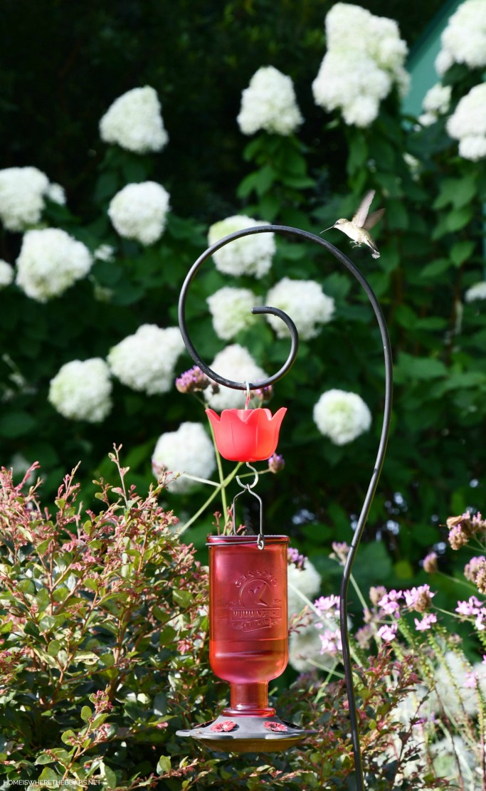 Attracting Hummingbirds and How to Revive a Tired Feeder | ©homeiswheretheboatis.net #hummingbirds #tips #DIY #paint