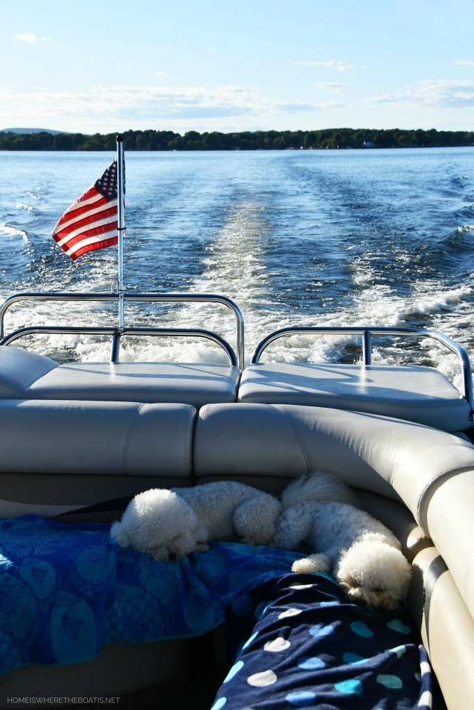 Lola and Sophie napping on pontoon | ©homeiswheretheboatis.net #lake #boating #dogs #bichonfrise #LKN