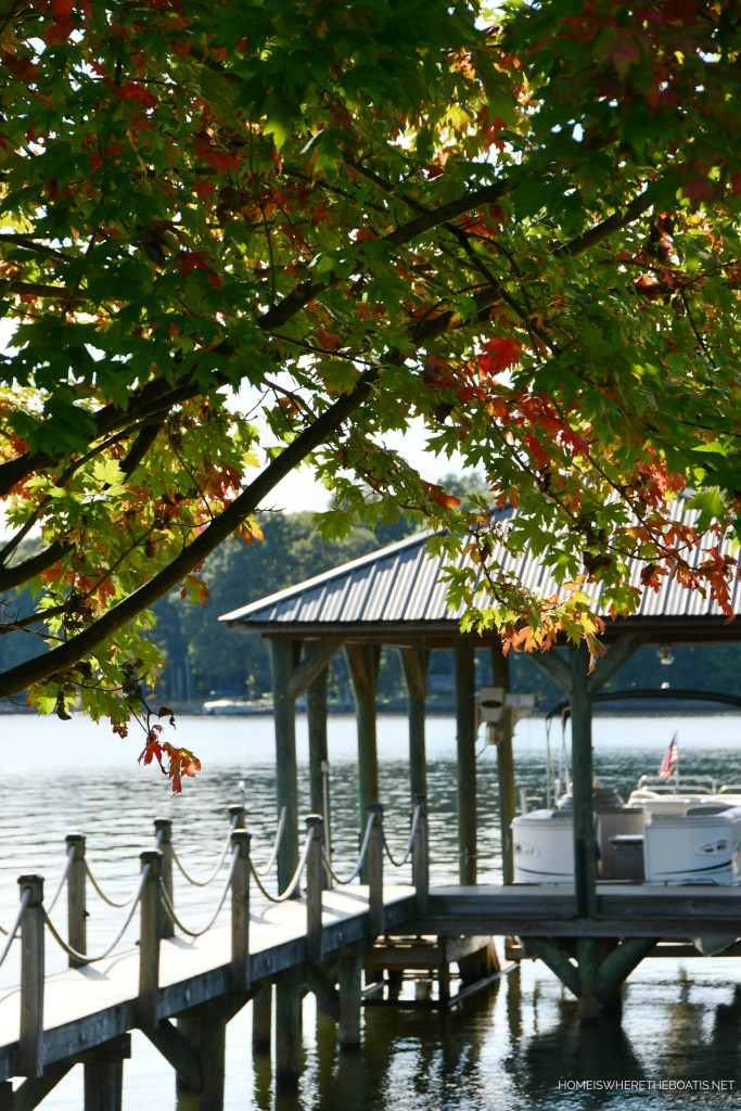 Weekend Waterview Lake Norman Maple tree | ©homeiswheretheboatis.net