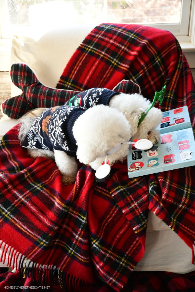 Bark the Halls dog advent calendar Lola and Sophie | ©homeiswheretheboatis.net #christmas #plaid #tartan #dogs #bichonfrise