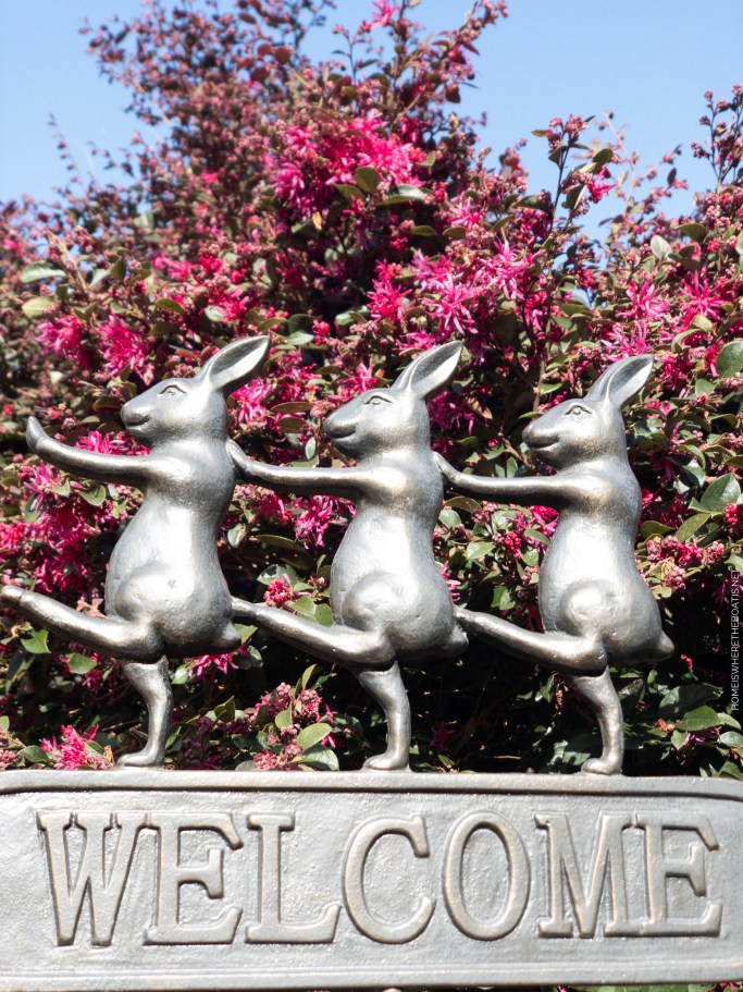 Bunny welcome sign garden | ©homeiswheretheboatis.net #spring #garden #rabbits