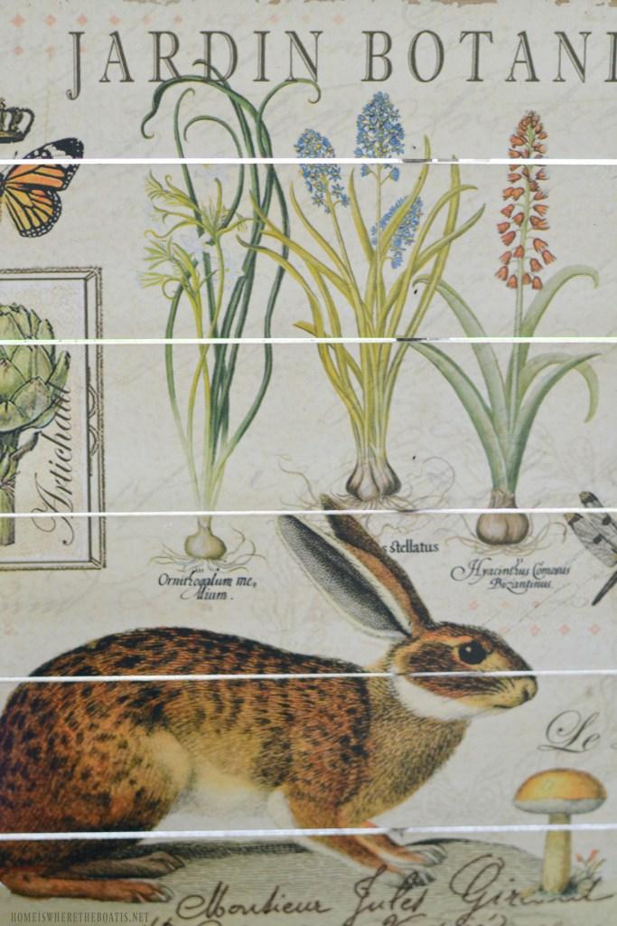 Jardin Botanique | ©homeiswheretheboatis.net #tablescapes #bunnies #shed #spring