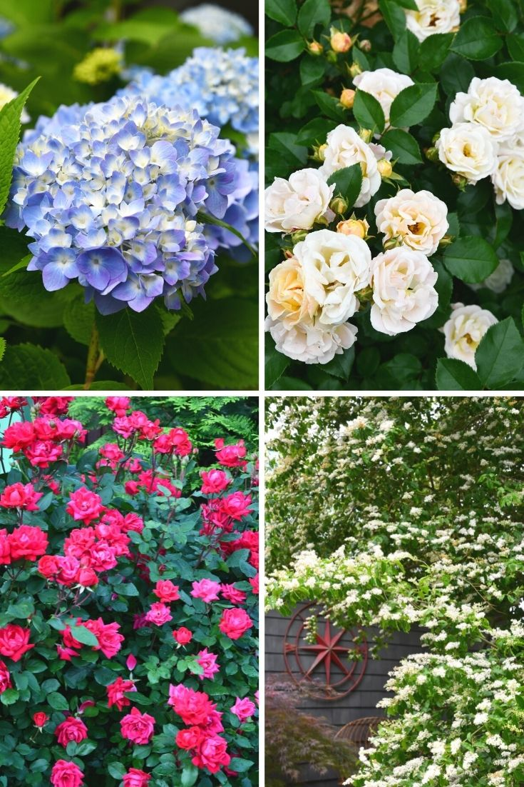Red, White and Blue garden flowers for arrangemen | ©homeiswheretheboatis.net #redwhiteandblue #transferware #flowers #tablescape #memorialday #patriotic