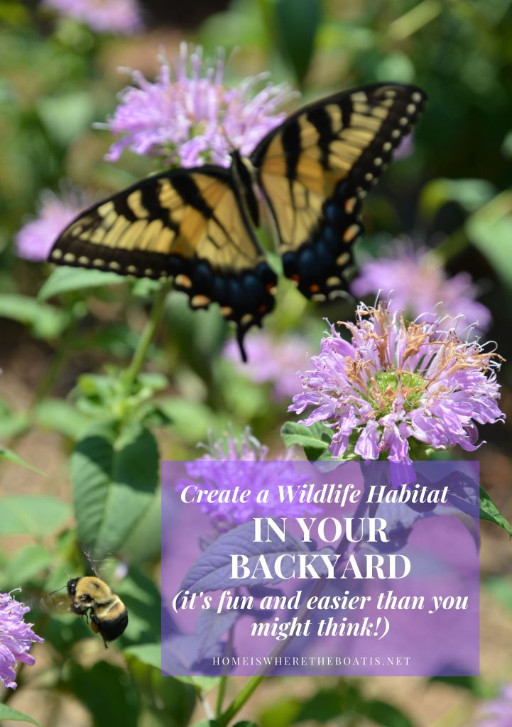 Learn how to create a habitat garden to attract birds, butterflies, and other neighborhood wildlife. It's fun, makes a positive difference and easier than you might think.