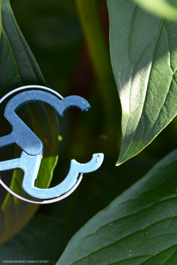 Garden plant clips to hold stems and vines in place | ©homeiswheretheboatis.net #peonies #flowers #garden